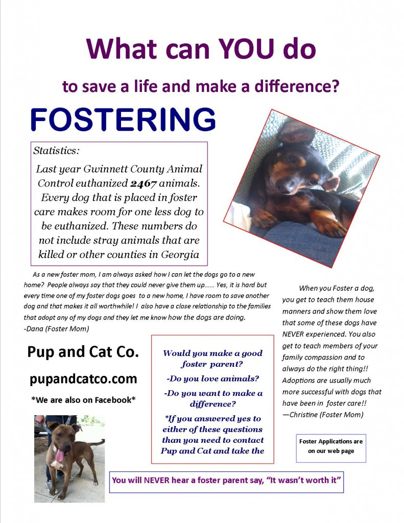 Fostering_Flyer
