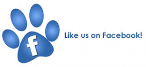 Like us on FB pawprint