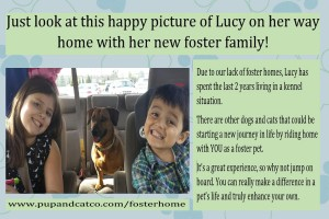 Lucy-foster-ad