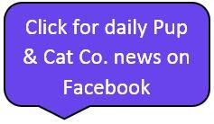 PAC daily FB news